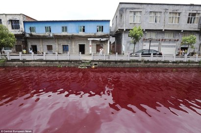 A river in Xinmeizhou contaminated by unidentified chemicals © Central European News