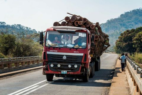 Chinese drivers carry illegally logged wood in Mozambique. ©Jeroen van Loon/Le Monde