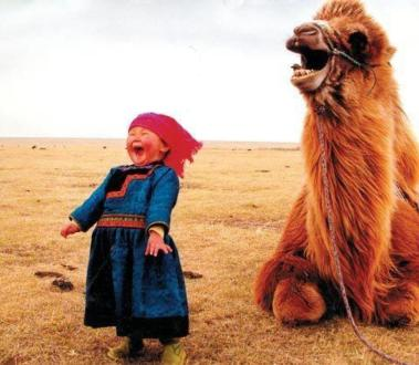laughing desert girl camel